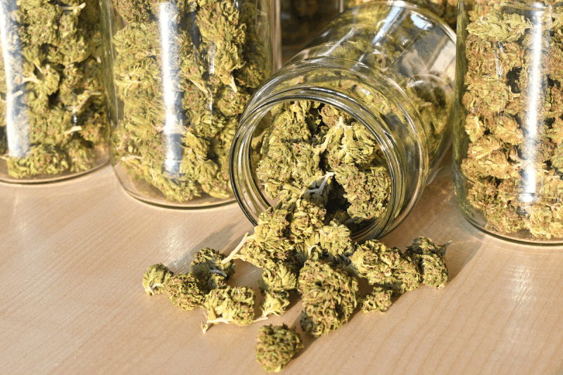 Legal and economic - Law of Cannabis